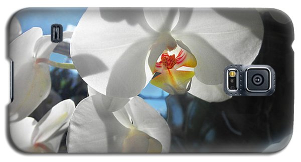 Galaxy S5 Case featuring the photograph White Orchids by David Klaboe