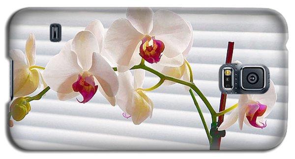 White Orchids On White Galaxy S5 Case by Ari Salmela