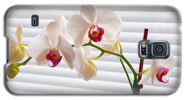 White Orchids On White Galaxy S5 Case