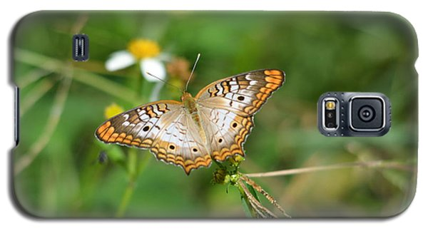 White Peacock Butterfly Galaxy S5 Case