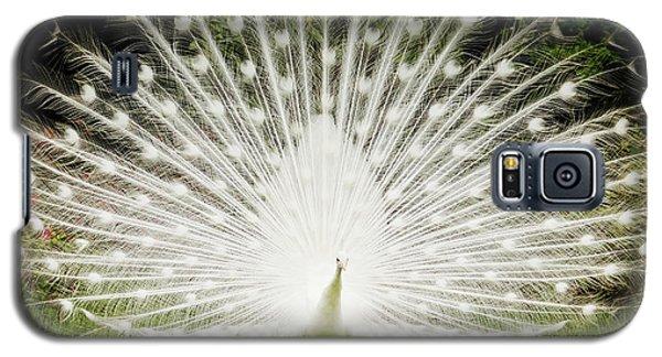 White Peacock  Galaxy S5 Case by Dustin K Ryan