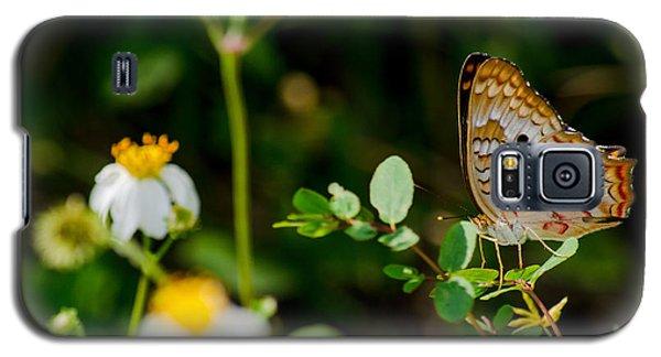 White Peacock On Common Beggar-tick Galaxy S5 Case