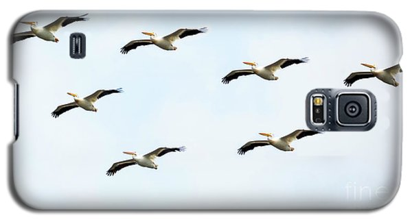 Galaxy S5 Case featuring the photograph White Pelican Flyby by Ricky L Jones