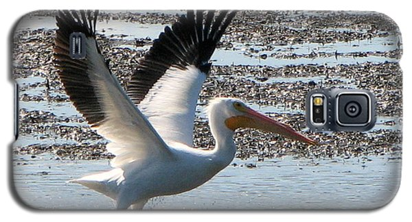 White Pelican Takes Wing Galaxy S5 Case