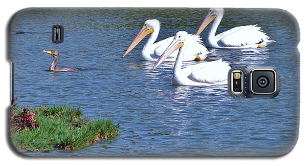 Galaxy S5 Case featuring the photograph White Pelicans by Martha Ayotte
