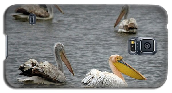 White Pelicans On Lake  Galaxy S5 Case