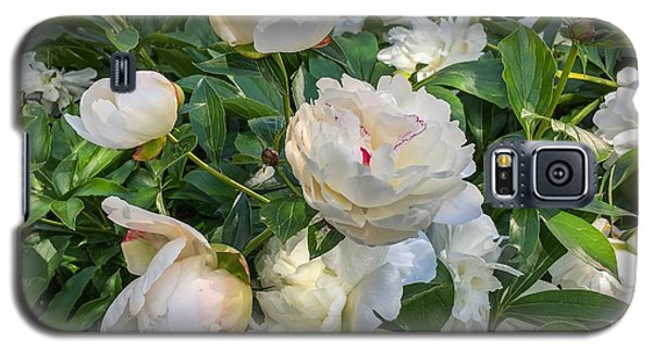 White Peonies In North Carolina Galaxy S5 Case