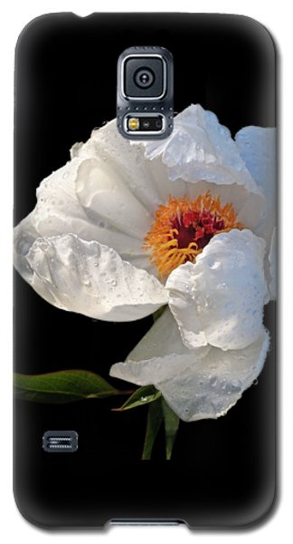 White Peony After The Rain Galaxy S5 Case by Gill Billington