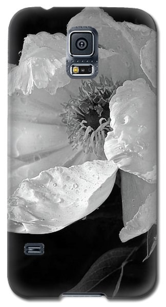 White Peony After The Rain In Black And White Galaxy S5 Case by Gill Billington