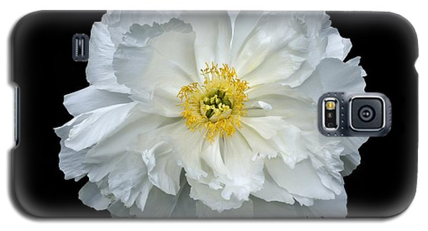 White Peony Galaxy S5 Case by Charles Harden