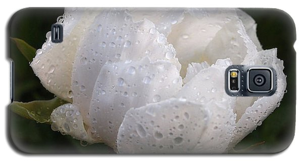 White Peony Covered In Raindrops Galaxy S5 Case by Gill Billington