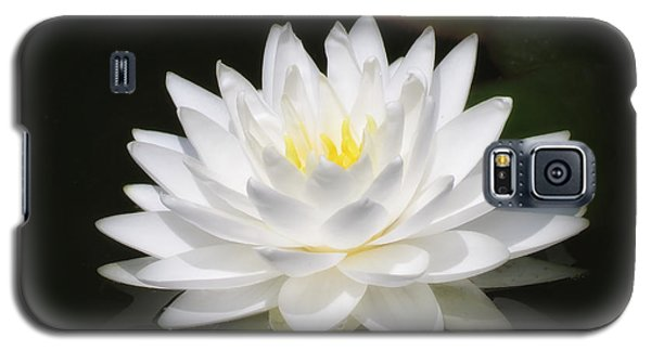 White Petals Glow - Water Lily Galaxy S5 Case