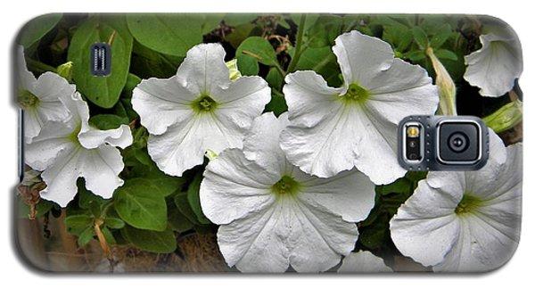 White Petunias Galaxy S5 Case