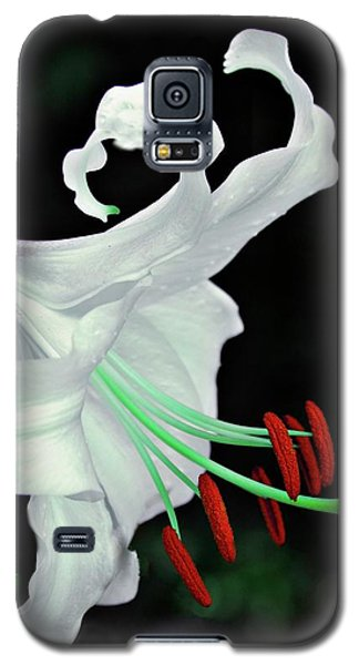 White, Red And Green Lily Galaxy S5 Case