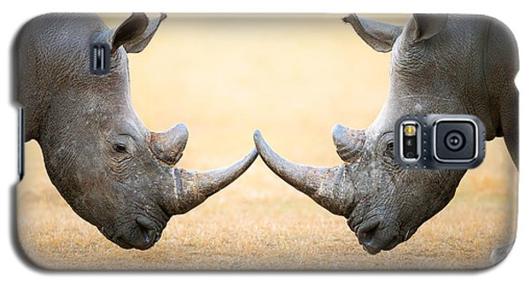 White Rhinoceros  Head To Head Galaxy S5 Case by Johan Swanepoel