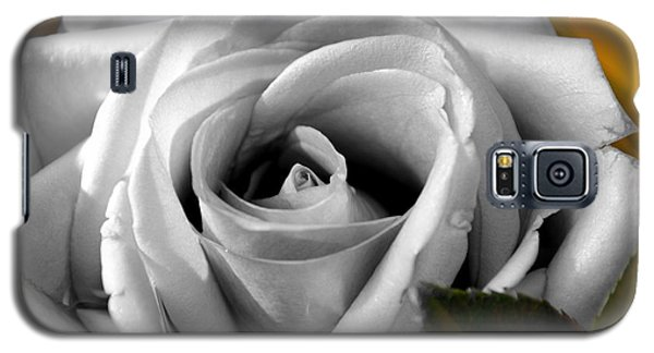 White Rose 2 Galaxy S5 Case