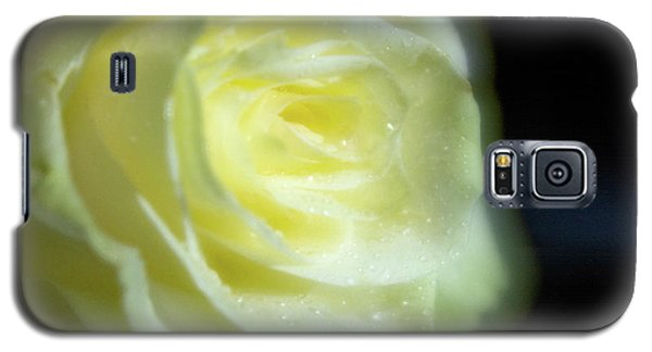 White Rose 4 Soft Galaxy S5 Case