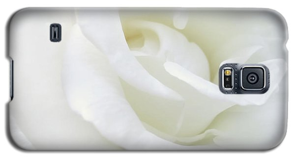 White Rose Angel Wings Galaxy S5 Case