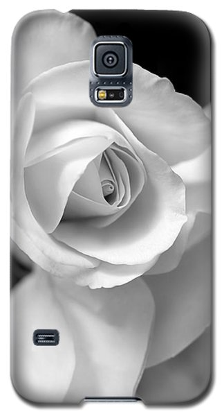 White Rose Petals Black And White Galaxy S5 Case