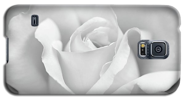 Galaxy S5 Case featuring the photograph White Rose Purity by Jennie Marie Schell