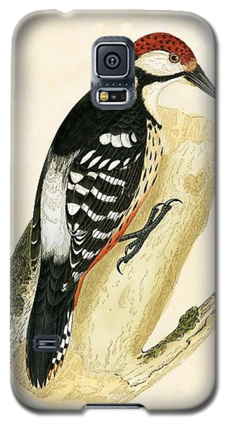 White Rumped Woodpecker Galaxy S5 Case