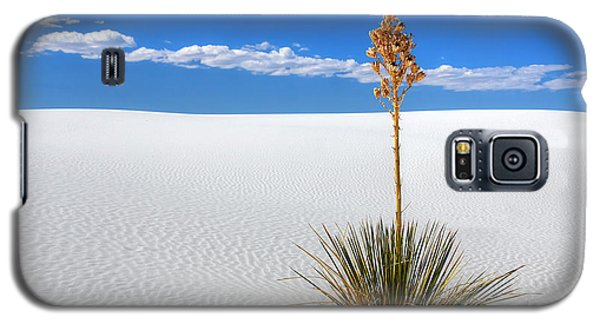 White Sands Yucca Galaxy S5 Case