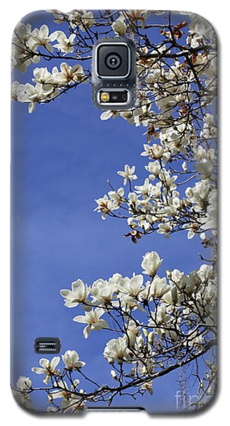 Saucer Magnolia Galaxy S5 Case - White Saucer Magnolia Against Blue Sky by Carol Groenen