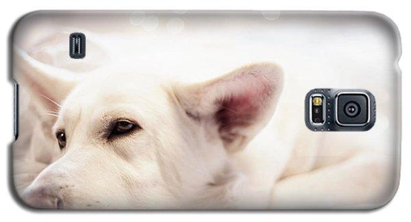 White Shepherd Galaxy S5 Case