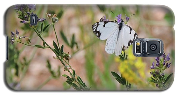 White-skipper On Lupine Galaxy S5 Case
