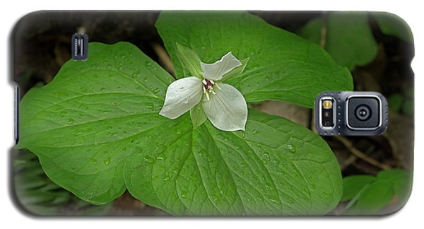 Galaxy S5 Case featuring the photograph White Spring Trillium by Mike Eingle