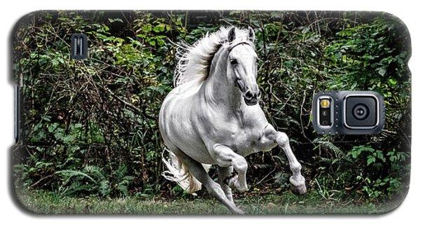 White Stallion Galaxy S5 Case