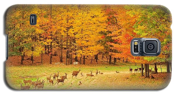 White Tail Deer Herd Galaxy S5 Case