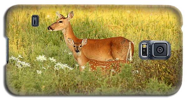 White-tail Doe And Fawn In Meadow Galaxy S5 Case