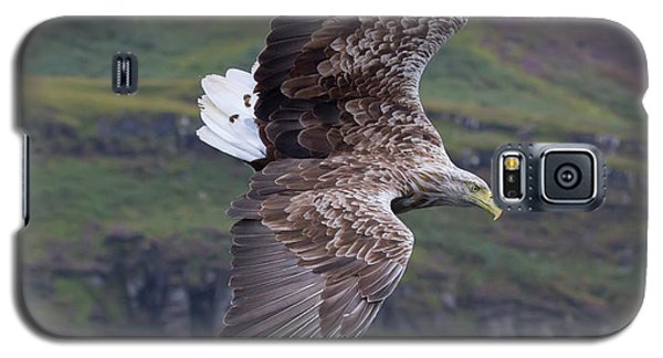 White-tailed Eagle Banks Galaxy S5 Case