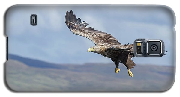 White-tailed Eagle On Mull Galaxy S5 Case
