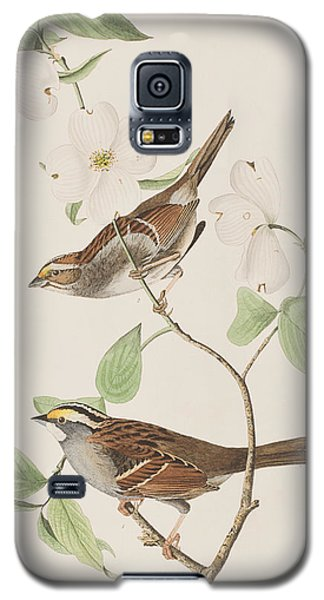 White Throated Sparrow Galaxy S5 Case by John James Audubon