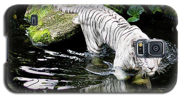 White Tiger Galaxy S5 Case