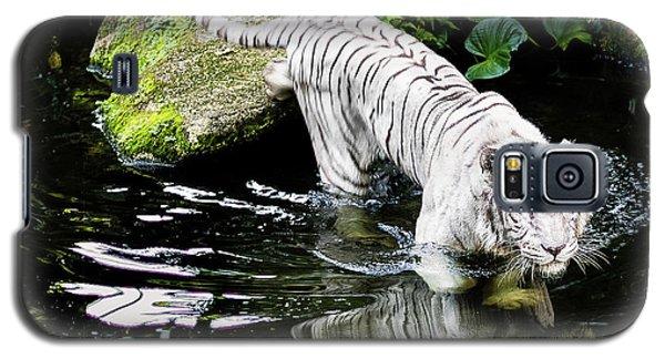 White Tiger Galaxy S5 Case by M G Whittingham