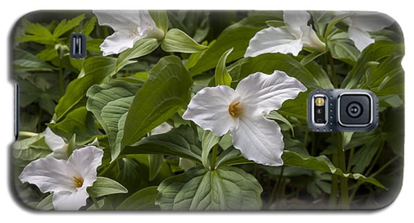 Galaxy S5 Case featuring the photograph White Trillium by Tyson and Kathy Smith