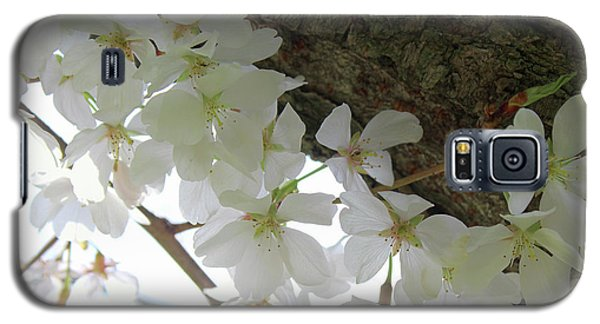 Dogwood Branch Galaxy S5 Case