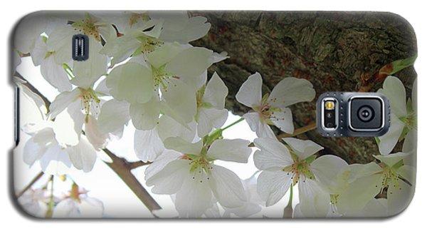 Dogwood Branch Galaxy S5 Case