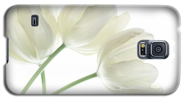 White Tulip Flowers Galaxy S5 Case by Charline Xia
