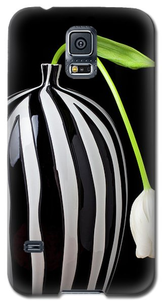 Tulip Galaxy S5 Case - White Tulip In Striped Vase by Garry Gay
