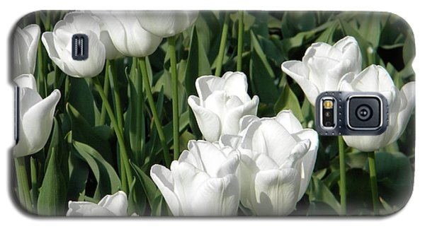 White Tulips Galaxy S5 Case by Manuela Constantin