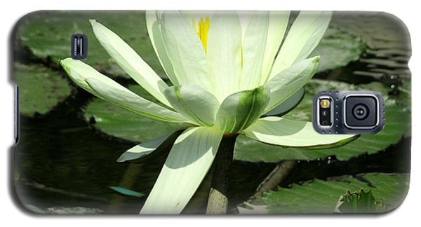 Galaxy S5 Case featuring the photograph White Water Lily 1 by Randall Weidner