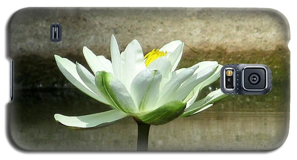 Galaxy S5 Case featuring the photograph White Water Lily 2 by Randall Weidner
