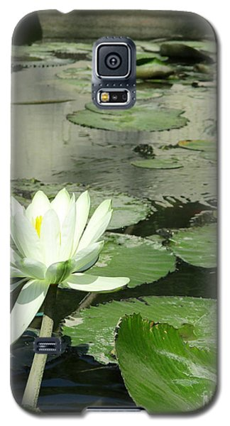 Galaxy S5 Case featuring the photograph White Water Lily 3 by Randall Weidner