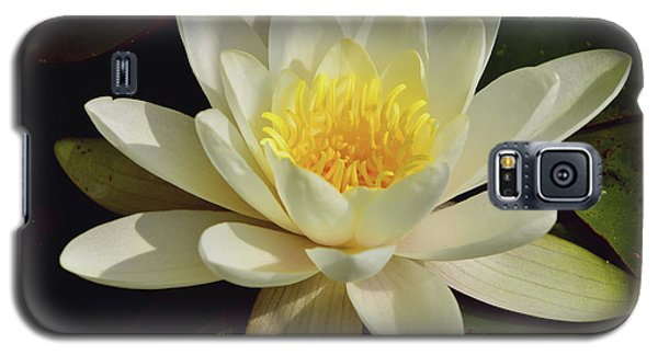 White Water Lily Galaxy S5 Case