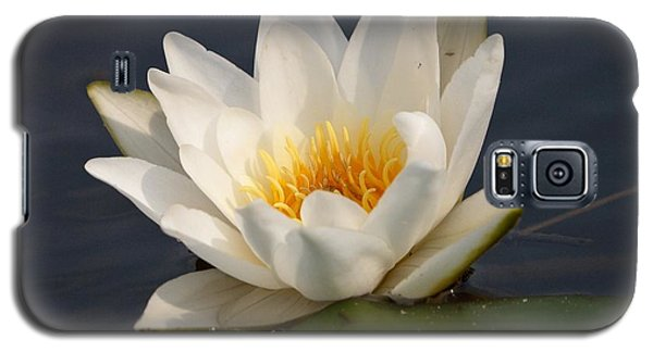 Galaxy S5 Case featuring the photograph White Waterlily 1 by Jouko Lehto