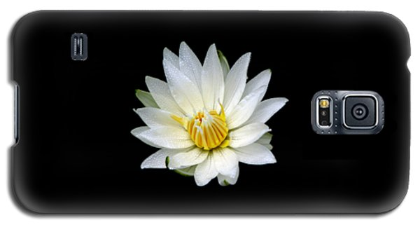 Galaxy S5 Case featuring the photograph White Waterlily With Dewdrops by Rose Santuci-Sofranko